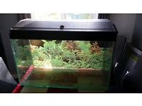 Fish tank 120 litres