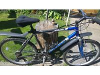 XL GIANT BIKE WITH 2 NEW TYRES, ALL WORKING £40 THROSK