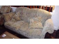 Lovely clean sofa AND chair FREE FREE