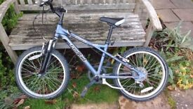 Metallic grey children's bike size 20 inches suit ages 5-8