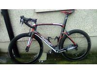 2014 triestina road bike (high modulus carbon monocoque)