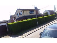 3 Bed spacious House. Vacant. SS8 9