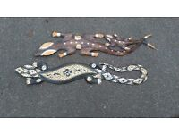 Aboriginal style wood carved lizards x2