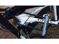 Ladie's bike