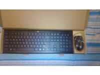 Full-Size Ergonomic Wireless Keyboard and Mouse