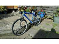 Adults bike, unisex, very good condition