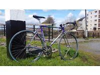 53cm Paganini Road Bike