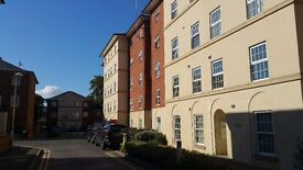 1 double bedroom to share in a flat near the hospital in Gloucester, GL1