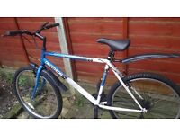 Bicycle decathlon