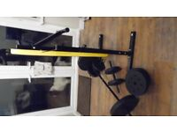 EVERLAST WEIGHT BENCH AND 50 KG OF WEIGHTS
