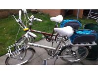Vintage shopper bikes