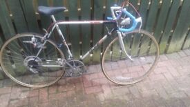Raleigh winner bicycle £45ono