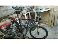 Specialized rockhopper retro 1996 mountain bike