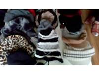 Job Lot 23 Fashion hats