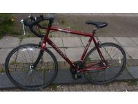 Trek Pilot Road Bike