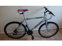 Sturdy Mountain Bike - Barely Used