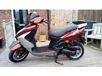 Sym Shark 49cc Moped