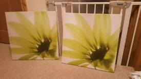 Lime flower canvas frame