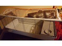 XL indoor rabbit cage