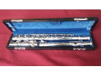 Hernals flute in good condition and books