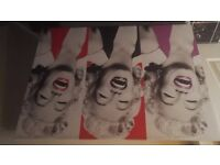 5 marilyn monroe canvases!! Immaculate. Condition!!!