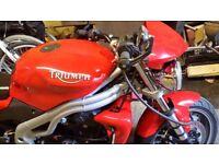 Triumph Speed Triple 955i 04 plate
