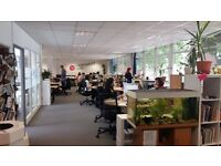 Desk Space to Rent in Happiness Hub
