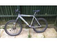 Men's large hardtail mountain bike