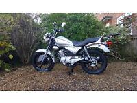 YAMAHA YBR CUSTOM 125 cc 2012 (12) Silver