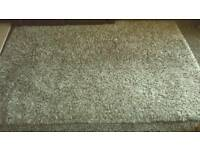 Large thick pile rug.