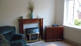 A large room available to rent from 24th November near Arm tech park and Addenbrooke's hospital