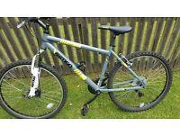 vertigo tabor mountain bike