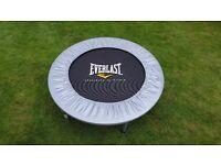 Everlast fitness rebounder trampette. Mini trampoline
