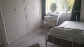 double/single room for females