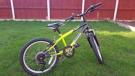 Raleigh extreme viper boys bike