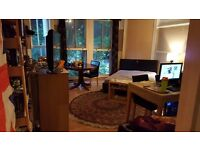 STUDIO FLAT FOR SHARE , £120 PW