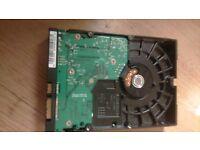 80GB Western Digital Hard Drive