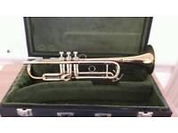 Sonora trumpet