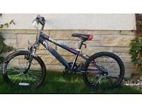 "Boys 16"" Wheel Halfords bike"