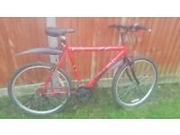 Adult mountain bike. Aluminium frame