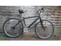 Raleigh 26 inch Men's Mountain Bike