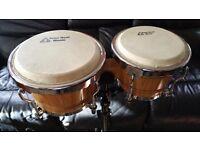 Bongo Drums by Tone Deaf