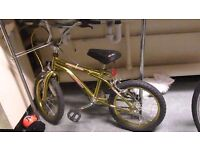 Lovely Gold Bike Child`s kids children`s 4-6 years