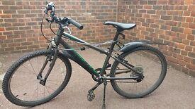 Kid bike Raleigh