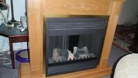 Electric Fire Place: Never used - like new - Oakwood Cabinet