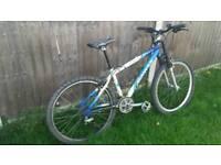 Adult 27 gear mountain bike