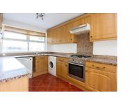 Spacious two-bed garden flat near to transport links. Tenanted until August