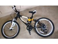 Kids Mountain Bike 20''