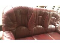 3+1+1 leather sofas