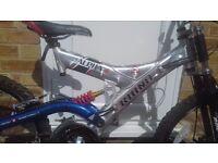 "21"" rhino 4 mountain bike"